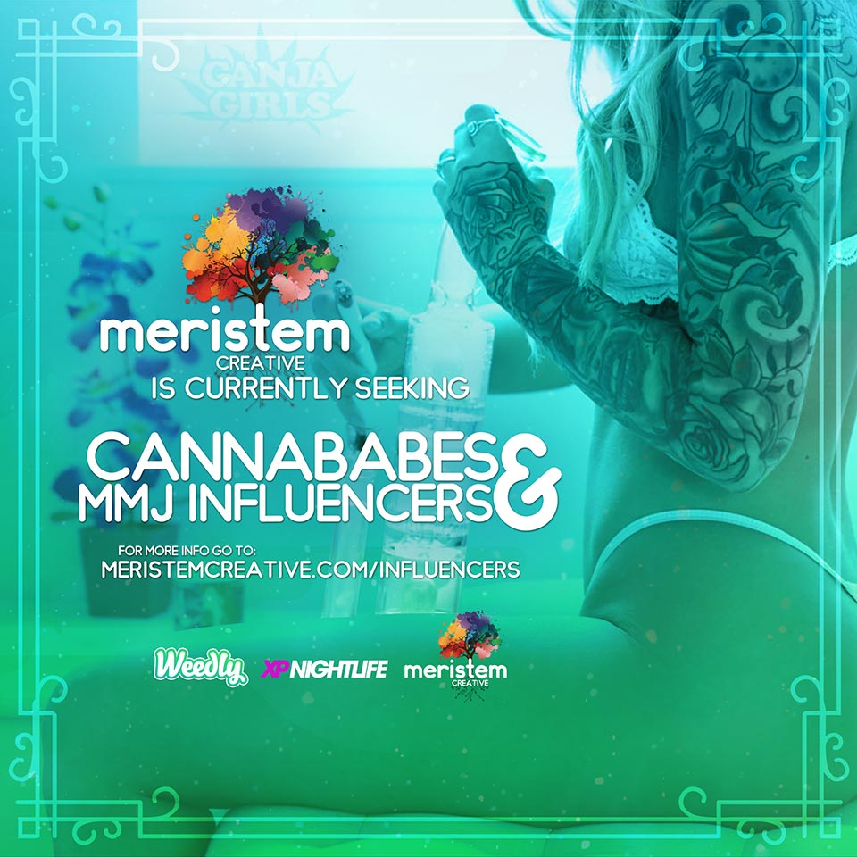 Meristem Seeking Cannabis Industry Influencers